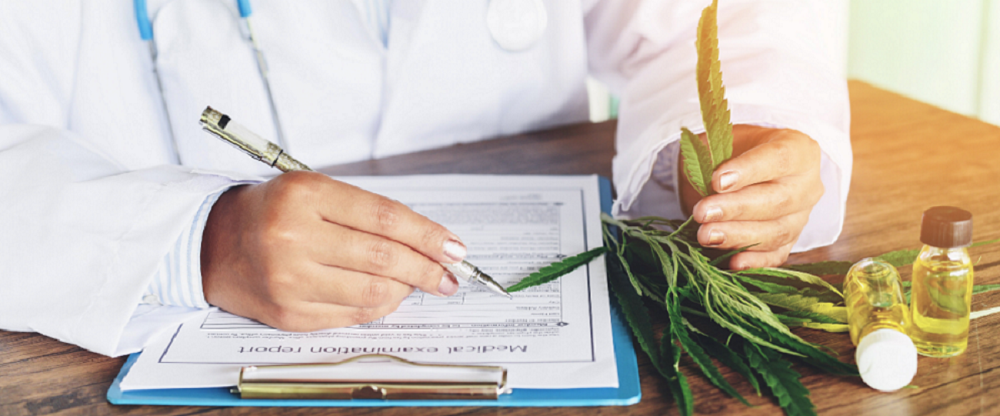doctor with medical cannabis report